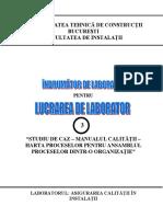 Lucrarea 3.pdf