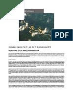 Hidrovias en La Amazonia