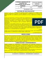 Formato Rendicion de Informe en Sst
