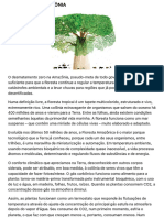 Nobre - O Futuro Da Amazônia