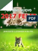 FELIZ_AÑO_2017.pps
