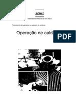 Operao de caldeiras.pdf