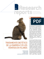 RR Gastroenteric Feline