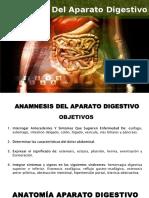 Anamnesis Digestivo-Castillo Dunia