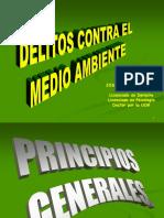 t.2.- Delito Ambiental Principios Generales