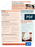 Como Cuidar a Pacientes Con Dengue en El Hogar