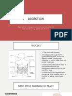 digestion