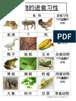 动物的进食习性.docx