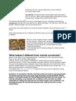 BTC Madness 1.1.pdf