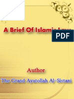 A Brief of Islamic Laws.pdf