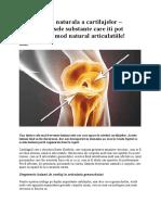 Regenerarea Naturala a Cartilajelor