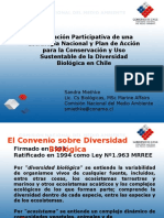 Articles 29446 Ppt14