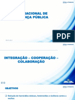 Plano Nacional de Seguranca Pública 060117