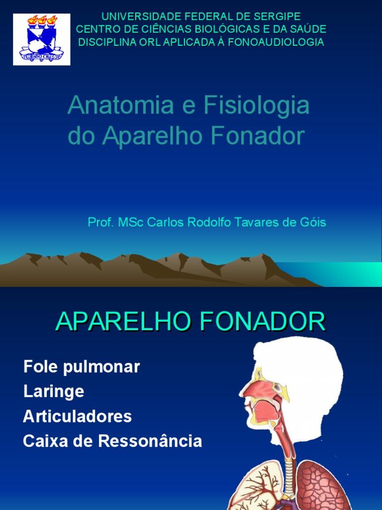 Anatomofisiologia Da Voz