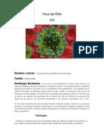 Virus del RNA.docx