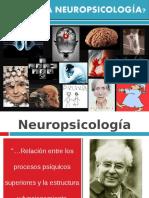 NPS1.pdf