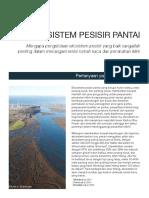 Ekosistem pesisir pantai