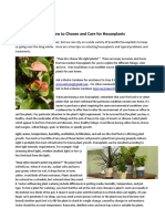 caring for houseplants january 2017vf