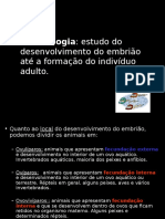Embriologia 2008 UNIC.ppt