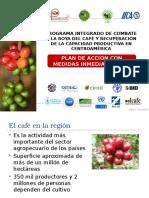 promecafe_wcr_plan_de_accion_medidas_inmediatas-roya_del_cafe_abril_2013_2.pptx