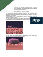 Patogenicidad de E. coli