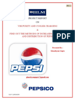 2003pepsiprojectreport-100905005253-phpapp01.doc