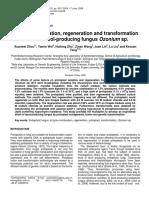 Protoplast formation, regeneration
