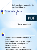 Documents.tips Entorsa de Glezna Topsa Ionut Paul
