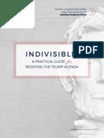 indivisibleguide 2017-01-05 v1
