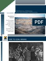 03_Coal_Seam_WS_TAC