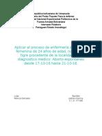JAIDELIN. 17-11-16.docx