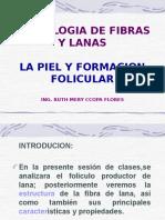 Tecnologia Fl Form.folicular