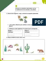 1° Clasificación plantas y animales