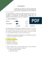 Cuestionario Piloto