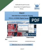 Rapport ENVI.docx