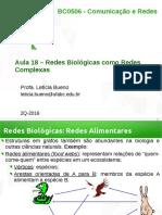 CR Aula18 Redes Biologicas