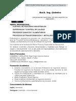 CURRICULUM INGENIERO ROGER HUGO CACERES.docx