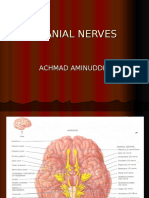 CRANIAL NERVES.ppt