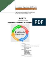 aplicacion de PMBOOK a gestion de empresas