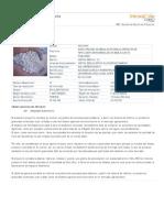 Proceso Granulacion Ulexita