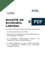 Las Remuneraciones en El Perú
