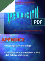 Apendicitis Aguda Doc Prixila