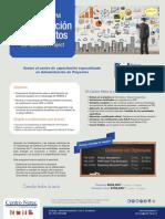 Flyer PMI Diplomado SCL