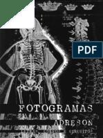 FOTOGRAMAS - Letras, corpos e circuitos