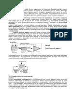 Mecanisme Control Fiziologie