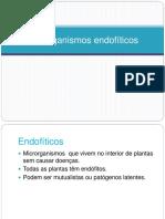 2015BIOTECMicologia2