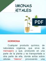 Hormonas 2016