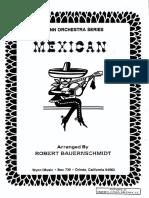 Mexicano Bauernschmidt Conductor