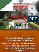 controle-biolgico-1222630347959756-9