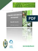 Seguridad y Salud Laboral, Una visión empresarial.pdf